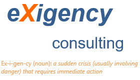 eXigency Consulting